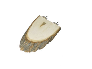 Basswood Perch, Oval