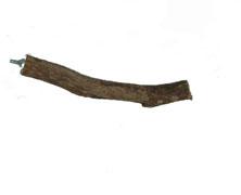 Dragonwood Perch